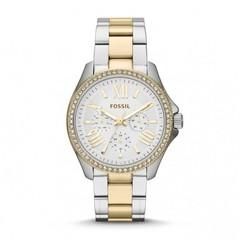 Наручные часы Fossil AM4543