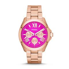 Наручные часы Fossil AM4549