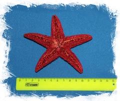 Амурская звезда (красная) 10-12 см.