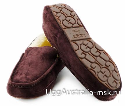 Ugg Mens Ascot Chocolate