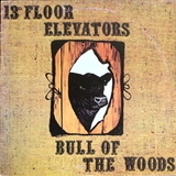 13th Floor Elevators / Bull Of The Woods (LP)