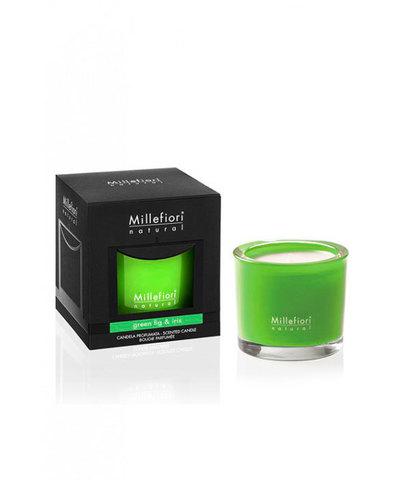 Ароматическая свеча Зеленый инжир и ирис, Millefiori Milano