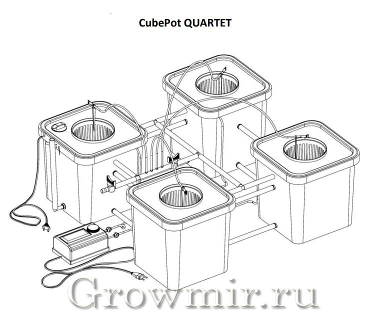 CubePot QUINTET