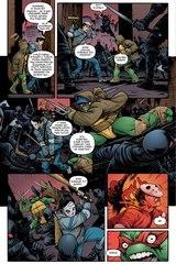Подростки мутанты ниндзя черепашки: Падший город. Обложка