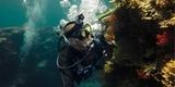 Пурпурный фильтр для дайв-бокса Magenta Dive Filter (ADVFM-301) под водой
