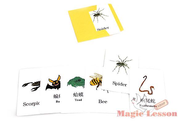 карты для фокуса Биосенсор
