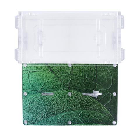 """Комплект муравьиной фермы """"зеленый лист"""" с муравьями"""