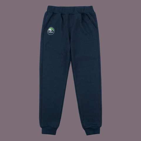 ШР413 Спортивные брюки для мальчика