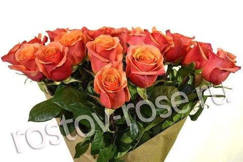 Букет 21 коралловая роза (Эквадор)