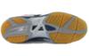 Мужские волейбольные кроссовки Мизуно Wave Rally 5 (V1GA1440 15) белые