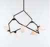Люстра Seed chandelier by Bec Brittain for Roll & Hill ( black )
