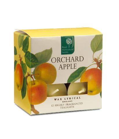 Набор ароматических чайных свечей Спелое яблоко, Wax Lyrical