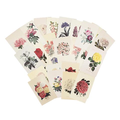 Набор открыток Herbarium
