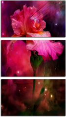 """Модульная картина """"Космический цветок"""""""