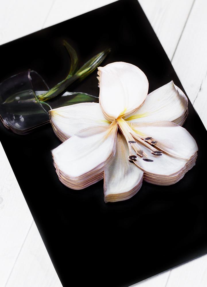 Белая лилия - готовая работа, детали сюжета.