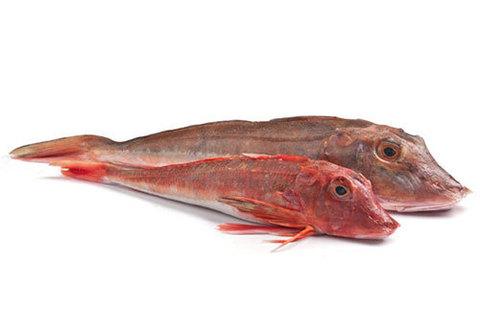 Тригла (морской петух) охлаждённый~1кг