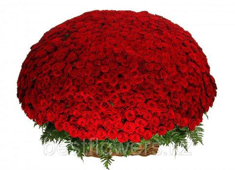 Букет из 1001 розы