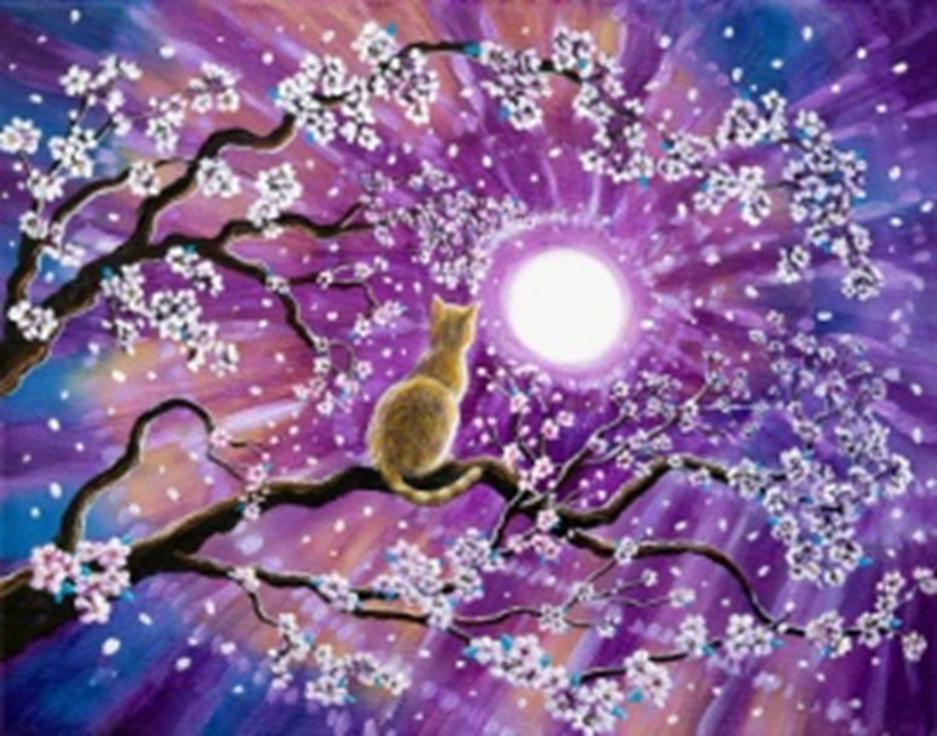 Картина раскраска по номерам 40x50 Кот любуется ночным ...