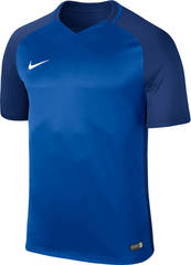 Футболка Nike Dry Team Trophy III Football Jersey 881483 | 881484 (463)