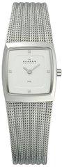 Наручные часы Skagen 380XSSS1