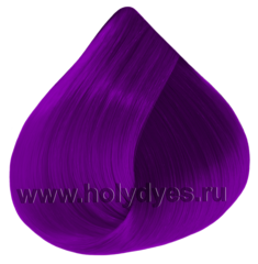Persona Red violet