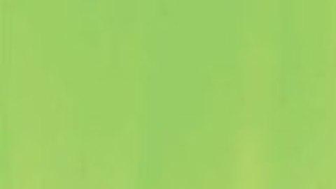 033 Краска Game Color Зеленый Ливрея (Livery Green) укрывистый, 17мл