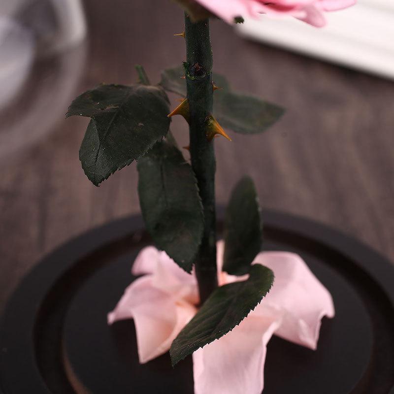 Это настоящая роза