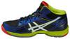 Мужские волейбольные кроссовки Asics Gel-Volley Elite 3 MT (B501N 5001) синие фото