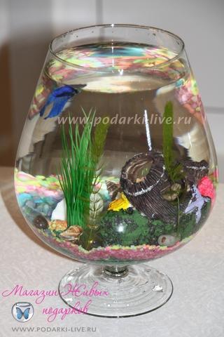 Мини аквариум бокал 5 л