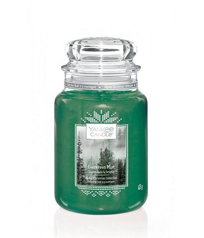 Ароматическая свеча Вечнозеленая хвоя, Yankee Candle