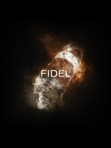 Кальянная смесь DO YOU -  Fidel (Фидель), 50г.