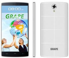 Электронный Голосовой переводчик GRAPE GTE-5.5 v.4
