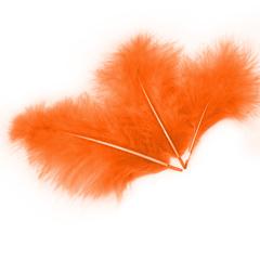 Перья Оранжевые, 30шт