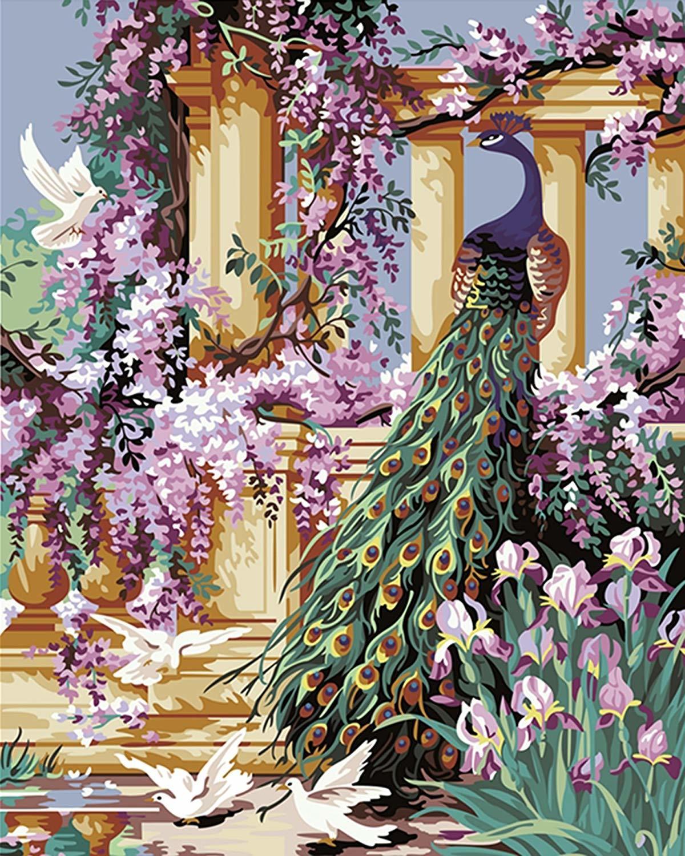 Картина раскраска по номерам 30x40 Гордый павлин в саду ...