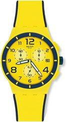 Наручные часы Swatch SUSJ401