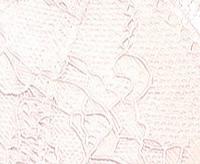 Трусы мини бикини LP-2637 (1шт.)