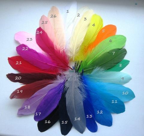 Перья гуся 15-20 см.(6 шт.) (выбрать цвет)