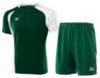 Мужская волейбольная форма Mizuno Trade (59RM352M 33-59HV351M 33) зеленая