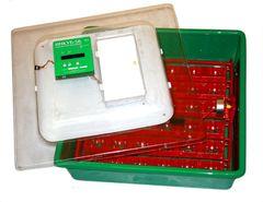 Инкубатор  для гусят и перепелов ИНКУБ-144