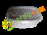 Мицелий вешенки зерновой, 250мл.