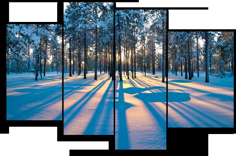 "Природа Модульная картина ""Лес зимой"" М922.png"