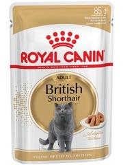 Royal Canin British Shorthair Adult влажный корм в соусе для взрослых от 1 года кошек породы британская короткошерстная и скоттиш-фолд