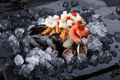 Морской коктейль с моллюском