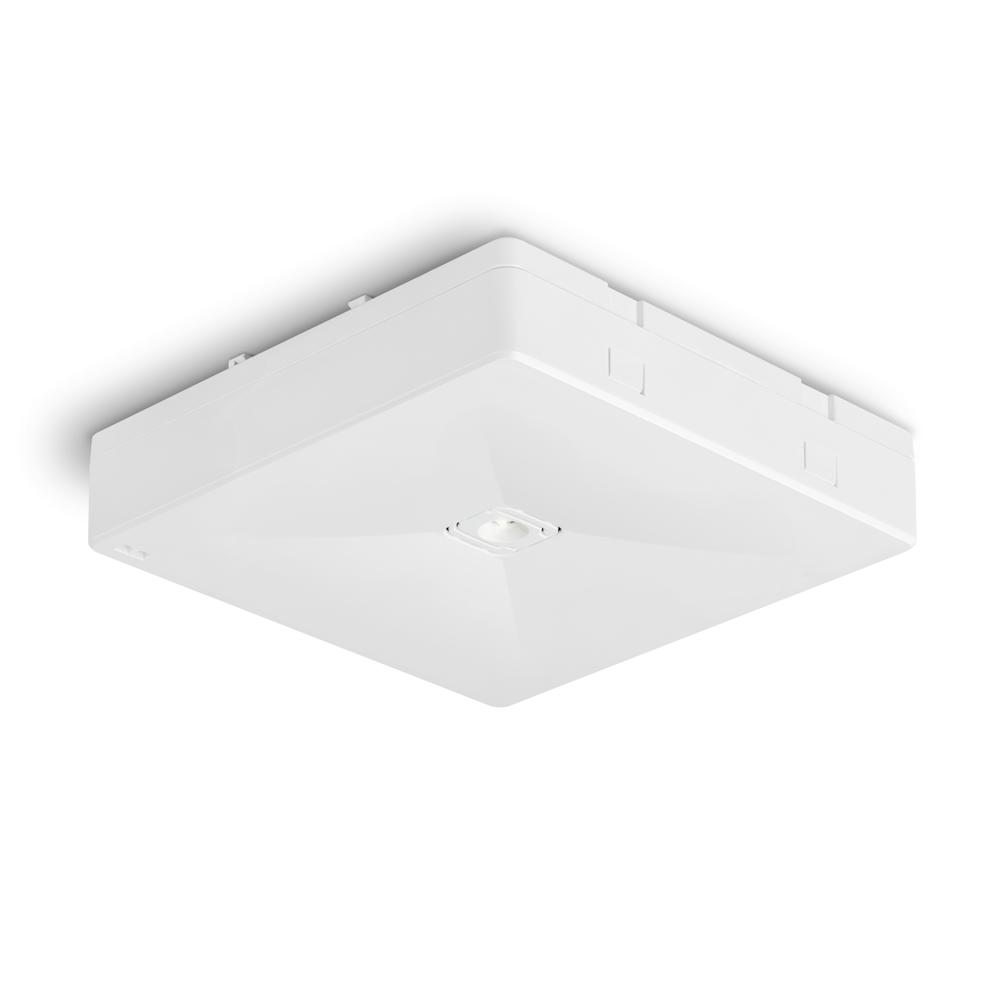 Аварийные светильники антипанического освещения больших открытых помещений ONTEC R M2 – общий вид