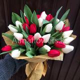 Букет из 35 красных и белых тюльпанов