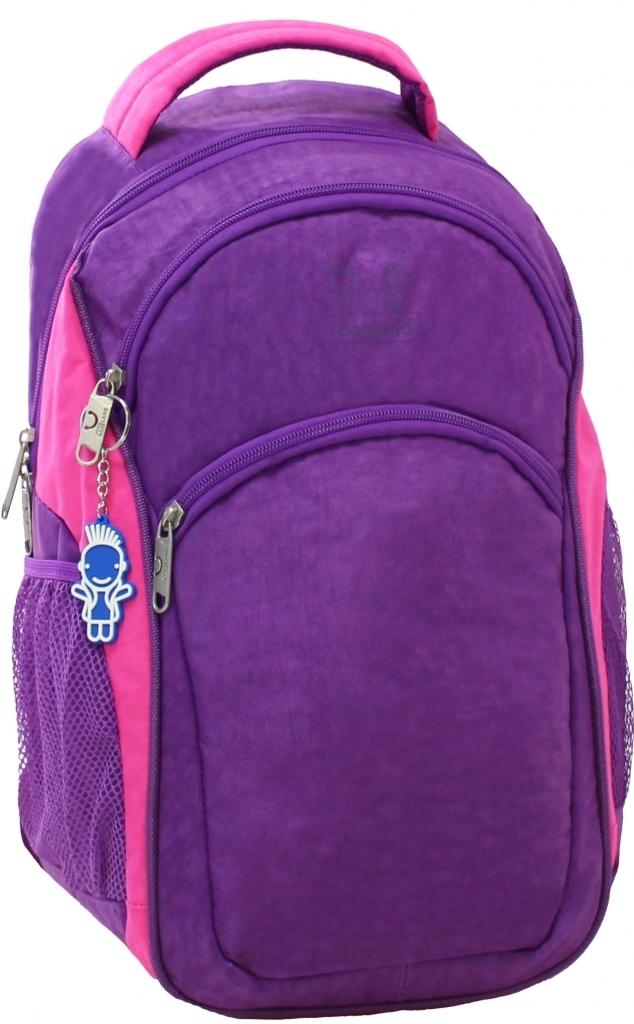 Городские рюкзаки Рюкзак Bagland Лик 21 л. Фиолетовый/розовый (0055770) 3d5a8f0ae3cb6978839e4df3cc36ea90.JPG