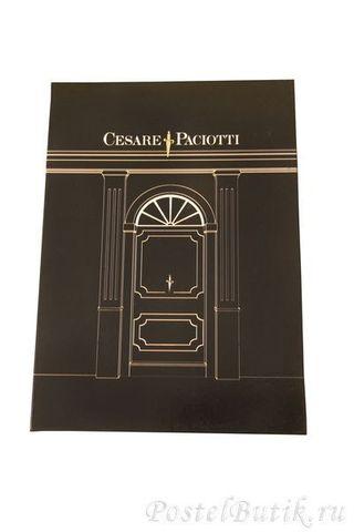 Набор полотенец 2 шт Cesare Paciotti Blade серый