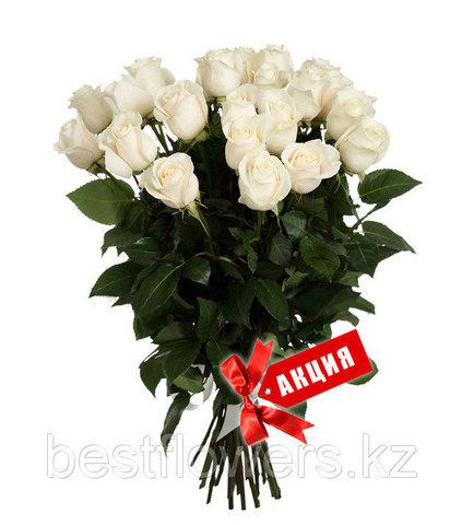 Букет из 25 белых, Голландских метровых роз