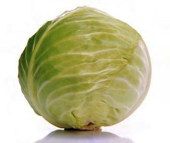 Белокочанная Грин Бой F1 семена капусты белокочанной, (Sakata / Саката) ГРИН_БОЙ_F1.jpg