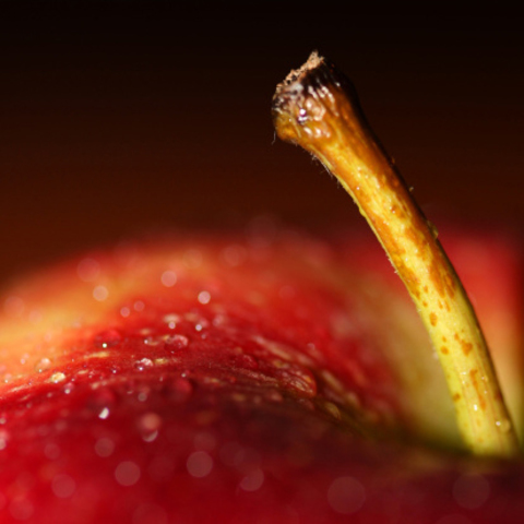 Ароматизатор для мыла Сладкое яблоко 10 мл